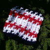 Independence Dishcloth