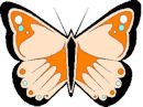 Insects-butterfly.jpg