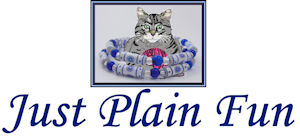 Just Plain Fun