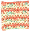 Static Stitch Dishcloth